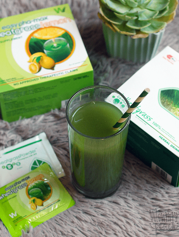 Easy Pha-Max Wheatgrass Herbal Drink